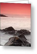 Fine Art- St Ives At Sunset By Phill Potter Greeting Card