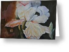 Fleur-de-lis Greeting Card