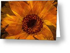 10449 Flower Greeting Card