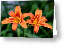 2 Flowers In Side By Side Greeting Card