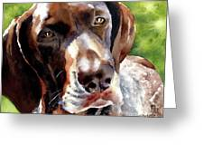 German Short Haired Pointer Greeting Card