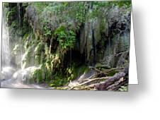 Gormon Falls Colorado Bend State Park.  Greeting Card