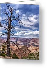 Grand Canyon National Park - South Rim Greeting Card