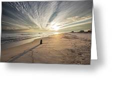 Gulf Shores Sunset  Greeting Card