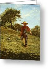 Haymaking Greeting Card