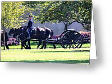 Horse And Caisson Team At Arlington Cemetery Greeting Card