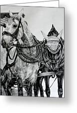 2 Horses Of Rothenburg 2000usd Greeting Card