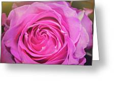 Hot Pink Greeting Card by JAMART Photography