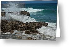 Hutchinson Island, Fl Greeting Card