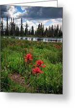 Ibantik Lake Trail Greeting Card