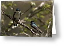 2 In A Tree Greeting Card