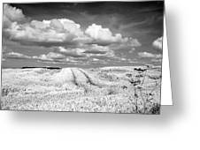Infrared Landscape In Norway Greeting Card