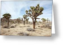 Joshua Tree National Park, California Greeting Card