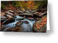 Kaaterskill Creek Greeting Card