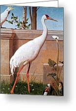 kb Marks Henry-Indian Crane Bullfinch and Thrush Henry Stacy Marks Greeting Card