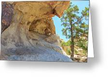 Landscape In Joshua Tree National Park Greeting Card