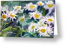Little Asters Greeting Card