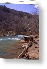 Long Pool Log Jam Greeting Card