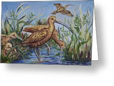 Longbilled Curlews Greeting Card