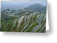 Longsheng Rice Terraces Greeting Card