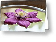 Clematis Flower On Water Greeting Card