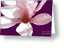 Magnolia Art Greeting Card