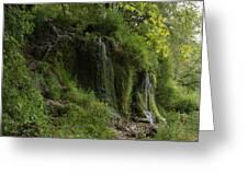 Malanaphy Springs Greeting Card