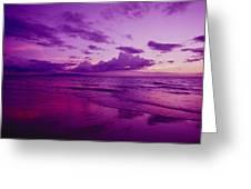 Maui Sunset Greeting Card