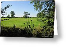 Meadow Near Coswig Greeting Card