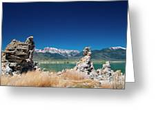 Mono Lake Tufa Greeting Card