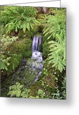 Mossy Waterfall Greeting Card