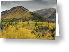 Mount Timpanogos Fall Colors Greeting Card