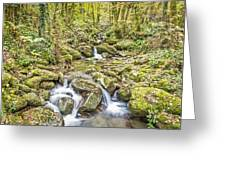 Mountain Stream In Autumn Greeting Card
