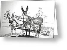 2 Mules Greeting Card