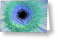 Multicolor Blues Greeting Card