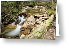 New England Waterfall Greeting Card