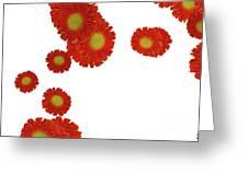 Nice Patterns Greeting Card