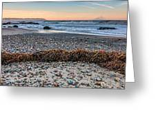 Cayucos State Beach Flotsam Pano Greeting Card