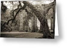 Old Sheldon Church Ruins Greeting Card