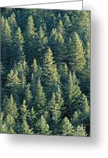 Oregon, Cascade Mountain Greeting Card