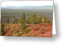 Oregon Landscape - View From Lava Butte Greeting Card