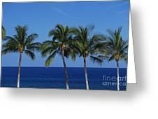 Palm Tree Tops Greeting Card