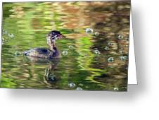 Pied-billed Grebe Bubbles Greeting Card