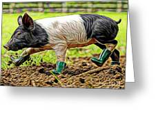 Pig Collection Greeting Card