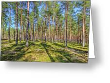 Pinewood Greeting Card