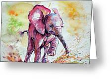 Playing Elephant Baby Greeting Card