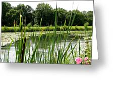 Pond At Beaver Island State Park In New York Greeting Card