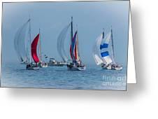 Port Huron To Mackinac Race 2015 Greeting Card