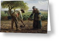 Potato Planters Greeting Card