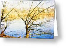 Quiet Summer Afternoon Greeting Card
